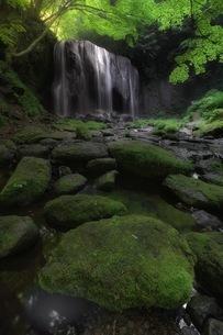 達沢不動滝 日本 福島県 猪苗代町の写真素材 [FYI04287631]