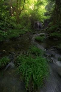 達沢不動滝 日本 福島県 猪苗代町の写真素材 [FYI04287632]