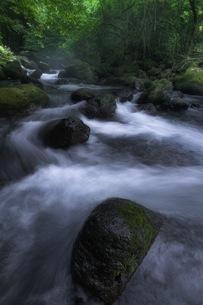 尚仁沢湧水 日本 栃木県 塩谷町の写真素材 [FYI04287640]