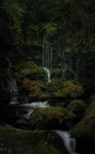元滝伏流水 日本 秋田県 にかほ市の写真素材 [FYI04287671]