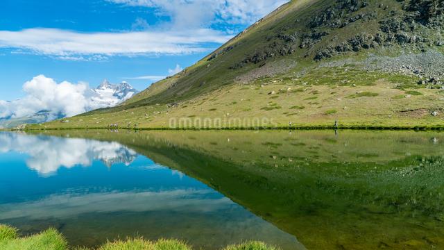 シュテリ湖 スイスの写真素材 [FYI04287734]
