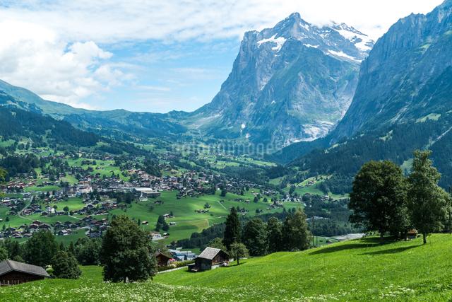 グルント スイスの写真素材 [FYI04287742]