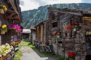 ツムレット スイスの写真素材 [FYI04287760]