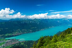 シーニゲプラッテ展望台 スイスの写真素材 [FYI04287779]