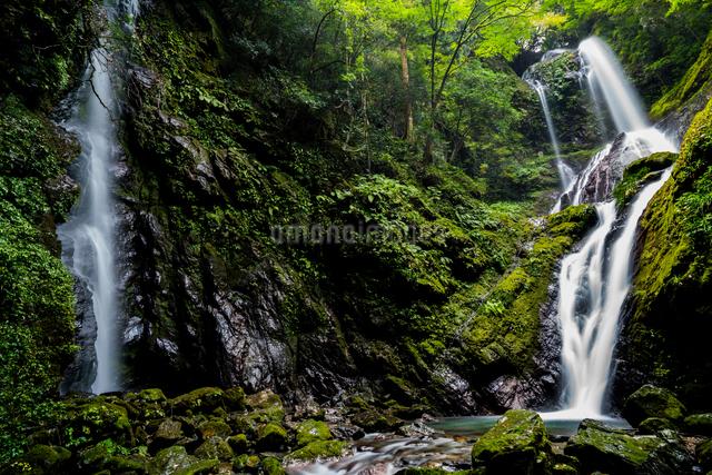 雨乞いの滝 日本 徳島県 神山町の写真素材 [FYI04287782]
