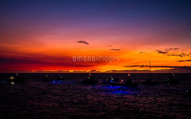 ケアウホウ湾 アメリカの写真素材 [FYI04287804]