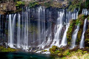 白糸の滝 日本 静岡県 富士宮市の写真素材 [FYI04287807]