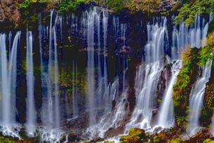 白糸の滝 日本 静岡県 富士宮市の写真素材 [FYI04287808]