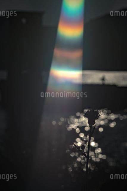 川棚魚雷試験場跡地 日本 長崎県 川棚町の写真素材 [FYI04287838]