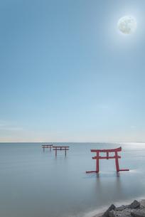 大魚神社 海中鳥居 日本 佐賀県 太良町の写真素材 [FYI04287879]