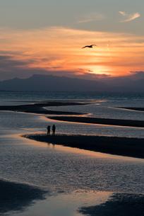 真玉海岸 日本 大分県 豊後高田市の写真素材 [FYI04287899]