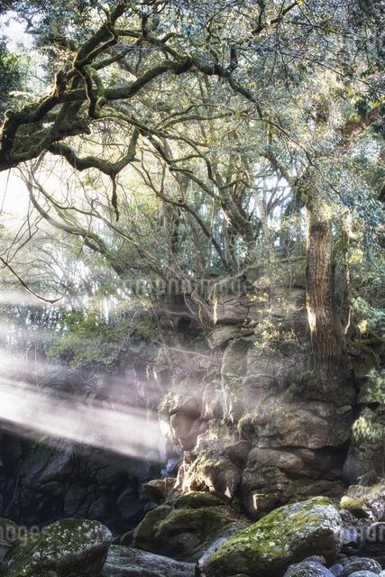夫婦滝 日本 熊本県 南小国町の写真素材 [FYI04287937]