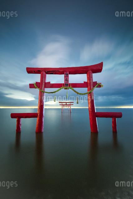 大魚神社 海中鳥居 日本 佐賀県 太良町の写真素材 [FYI04287942]
