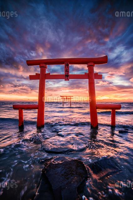 大魚神社 海中鳥居 日本 佐賀県 太良町の写真素材 [FYI04287976]