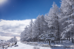 高ボッチ山 日本 長野県 岡谷市の写真素材 [FYI04287984]