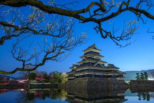松本城 日本 長野県 松本市の写真素材 [FYI04288009]