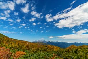 乗鞍岳エコーラインの写真素材 [FYI04288043]
