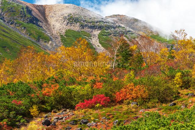 乗鞍岳エコーラインの写真素材 [FYI04288048]