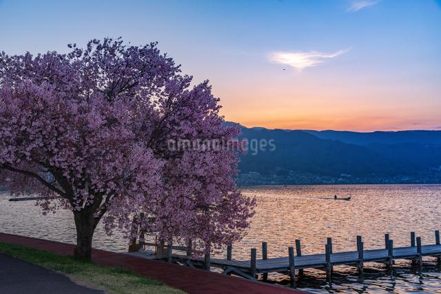 諏訪湖 日本 長野県 諏訪市の写真素材 [FYI04288074]