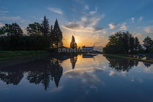 国営アルプスあづみの公園 日本 長野県 安曇野市の写真素材 [FYI04288077]