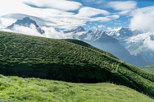フィルスト スイスの写真素材 [FYI04288105]