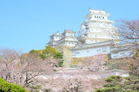 春の姫路城の写真素材 [FYI04288356]