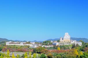 秋空の姫路城の写真素材 [FYI04288357]