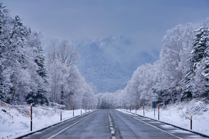 冬の三国峠の写真素材 [FYI04288373]