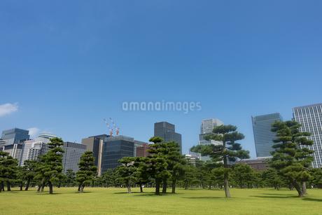 街の風景の写真素材 [FYI04288472]