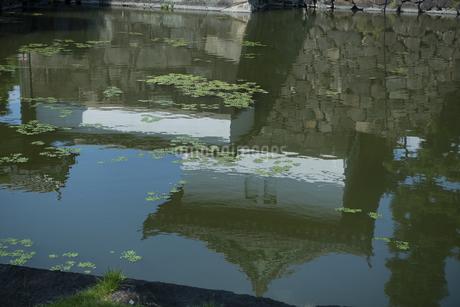 水面の写真素材 [FYI04288473]