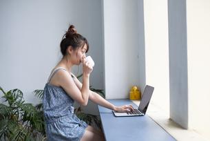 パソコンを操作しながらお茶を飲んでいる女性の写真素材 [FYI04288686]