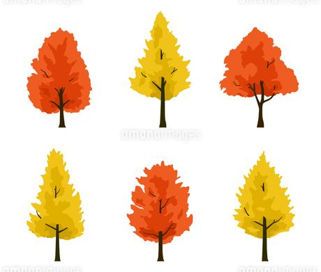 楓とイチョウ 紅葉の木イラストセットのイラスト素材 [FYI04288766]