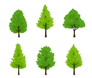 緑木のイラストセットのイラスト素材 [FYI04288767]