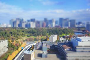 皇居と都心のビル群とイチョウ並木 ミニチュア風景の写真素材 [FYI04288822]
