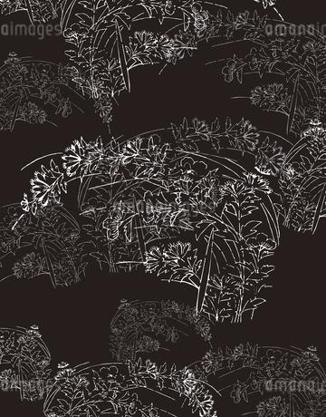 植物柄のパターンのイラスト素材 [FYI04288941]