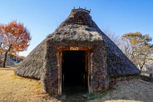 秋の本町田遺跡公園、竪穴式住居(弥生復元住居)の写真素材 [FYI04289332]