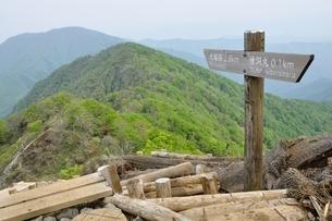 新緑の丹沢主稜の山並みの写真素材 [FYI04289335]