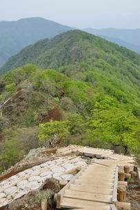 新緑の丹沢主稜の山並みの写真素材 [FYI04289336]