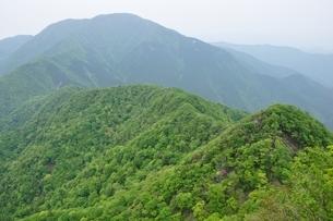 緑の丹沢主稜と大室山の写真素材 [FYI04289373]