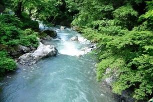 奥多摩 日原川の写真素材 [FYI04289438]