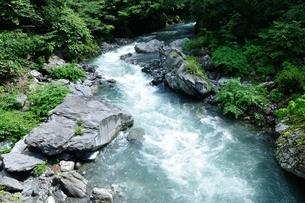 奥多摩 日原川の写真素材 [FYI04289440]