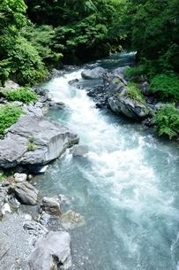 奥多摩 日原川の写真素材 [FYI04289441]