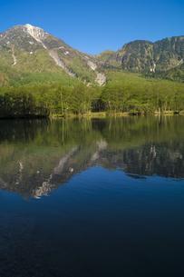 信州 長野県松本市上高地 朝の大正池に映る焼岳の写真素材 [FYI04289504]