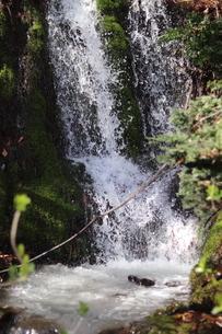小さい滝(縦)の写真素材 [FYI04289682]