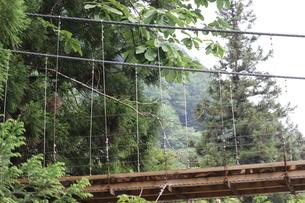 吊り橋の写真素材 [FYI04289759]