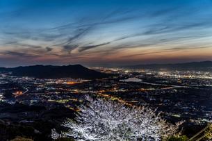 夜桜の向こうに見る紀の川市の夜景の写真素材 [FYI04289802]