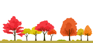 紅葉の木の背景イラストのイラスト素材 [FYI04289843]