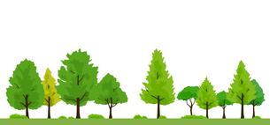 緑木の背景イラストのイラスト素材 [FYI04289844]