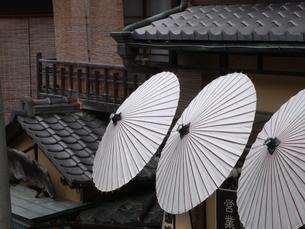 傘の写真素材 [FYI04289951]