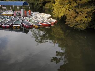 ボートの写真素材 [FYI04289963]